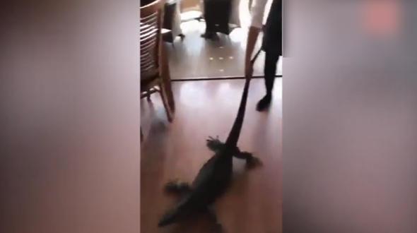 Kadın garsondan şaşırtan hareket