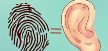 Kulak sağlık hakkında neler söylüyor?